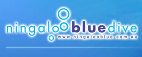 Ningaloo Blue Dive - Kingaroy Accommodation