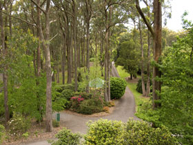 Mount Lofty Botanic Garden - Kingaroy Accommodation