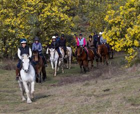 Burnelee Excursions on Horseback - Kingaroy Accommodation