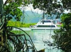 Cairns Harbour Cruises - Kingaroy Accommodation
